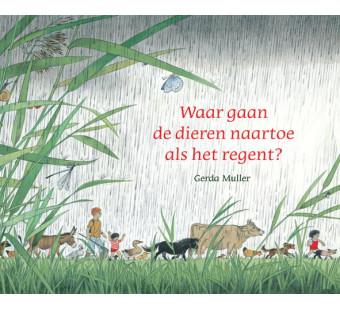 Waar gaan de dieren naartoe als het regent? (Gerda Muller)