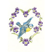 Postal card  Blue tit and Violas (Molly Brett)