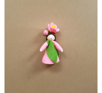 Seasonal doll Camellia japonica