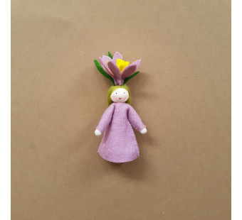 Seasonal doll crocus