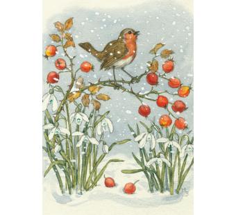 Postal card Robin and Rosehips (Molly Brett)