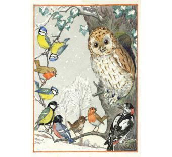 postkaart An owl and other birds (Molly Brett) 177