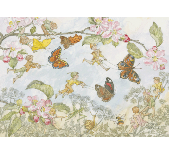 Postal card The Butterfly race (Molly Brett)