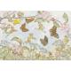 Postal card The Butterfly race (Molly Brett)
