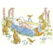 Postal card  An adorable newborn baby (Molly Brett)