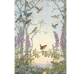 Postal card Dawn Chorus (Molly Brett)