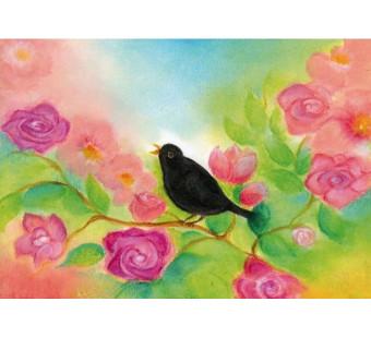 The blackbird (Baukje Exler)