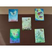 Set of 5 postal cards butterflies