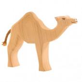 Ostheimer camel (20901)
