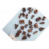 Montessori houten letters alfabet