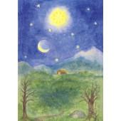 Advent calendar large - Der Weihnachtsstern  Dorothea Bernet