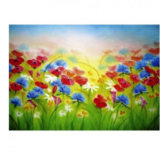Poppies and cornflower field (Baukje Exler)