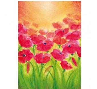 Poppies (Baukje Exler)