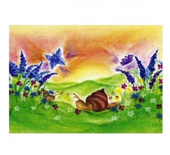 The snail (Baukje Exler)