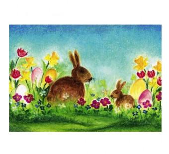 Easter Bunny (Baukje Exler)