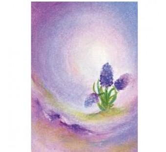 Postkaart De hyacint (Baukje Exler)