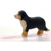 Ostheimer Berner Senner hond (10521)