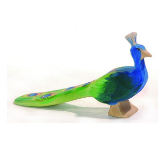 Ostheimer peacock (11844)