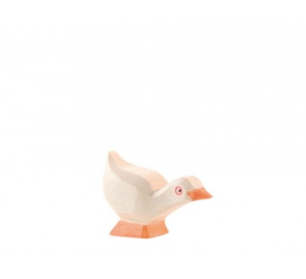 Ostheimer goose chick head down (13318)