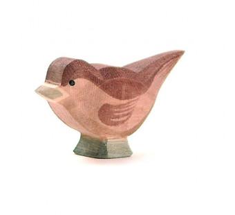 Ostheimer sparrow (16808)