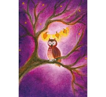 The owl (Baukje Exler)