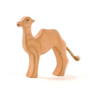 Ostheimer camel cub (20902)