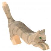 Ostheimer grijze spinnende kat (11402)