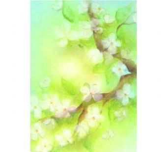 Blossom (Baukje Exler)