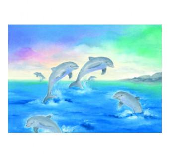 Postkaart Dolfijnen (Baukje Exler)