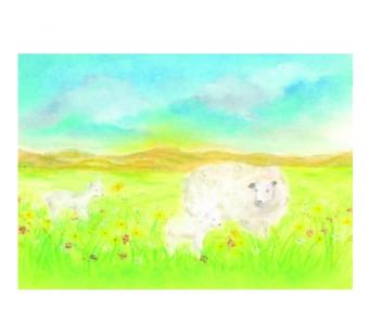 Postkaart Het schaap (Baukje Exler)