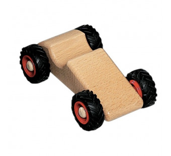 Fagus wooden  race car (11.01)