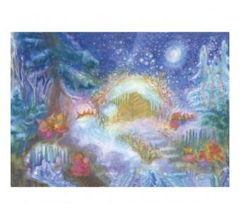 Advent calendar XXL Weihnachten im Wal bei den Tieren (Koconda)