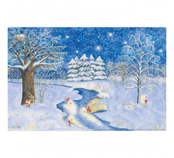 Adventskalender Small- Weihnachtslichter fur die Natur (elisabeth heuberger)