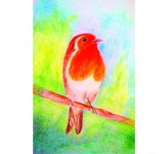 Postcard Robin (Brechtje Duijzer)