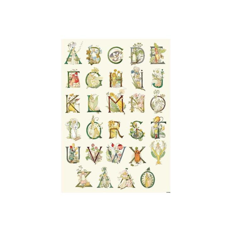 Fem Adelborg (Cijfer- en Letter kaarten)